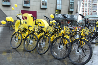 Ofo launch CW Library