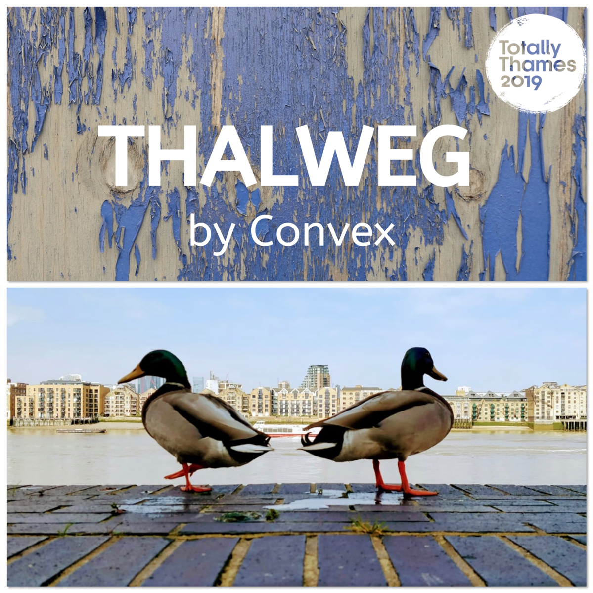 article thumb - Thalweg by Convex