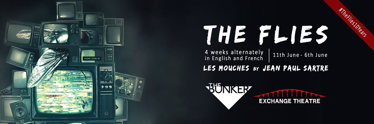 The Flies - information banner
